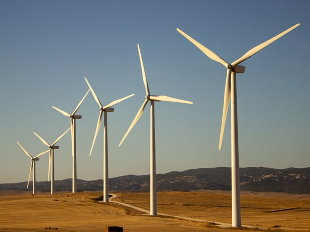 Wind Sector Industry